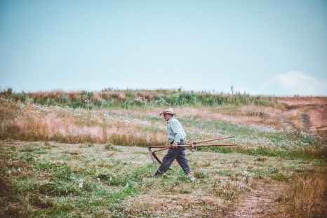 man walking on farm